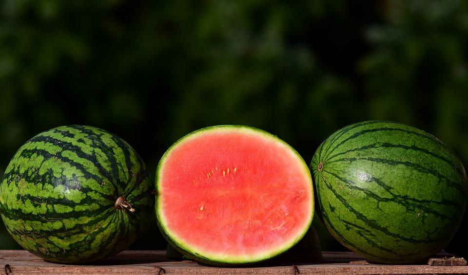 melon 2691415 960 720