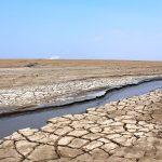 17 iunie - Ziua mondială pentru combaterea deşertificării şi a secetei