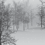 snow 1848346 1280